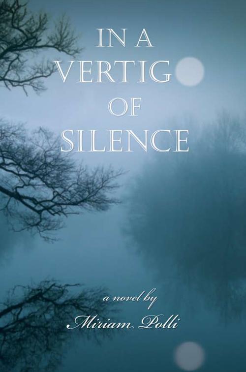 InAVertigoOfSilence